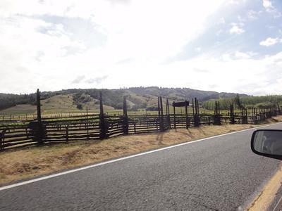 Northern California May 2011