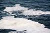 Foam on the water from dead plankton, etc.