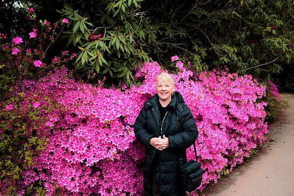 Here I am in front of a massive display of azalias. The weather was quite chilly, but we were actually very comfortable as the sun came out in midday.