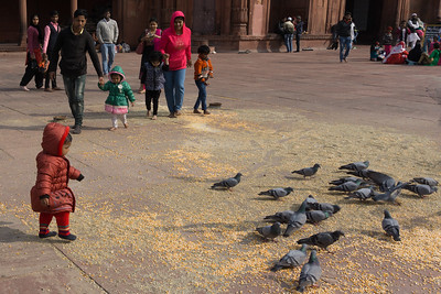 Little girl feeding the pigeons at Jama Masjid.