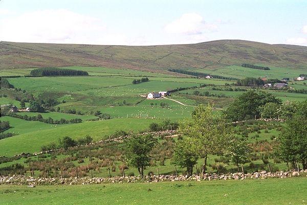 Farmland Hills
