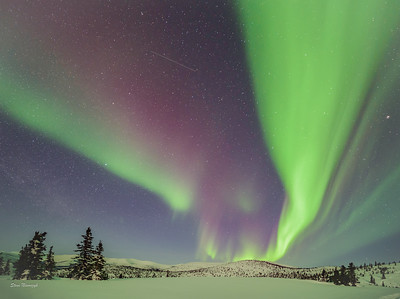 Raging Northern Lights