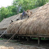 Vietnam Museum of Ethnology - Ede Longhouse, refurbishing the roof