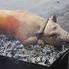 Roast pig close-up