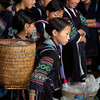 Black Hmong in Sapa