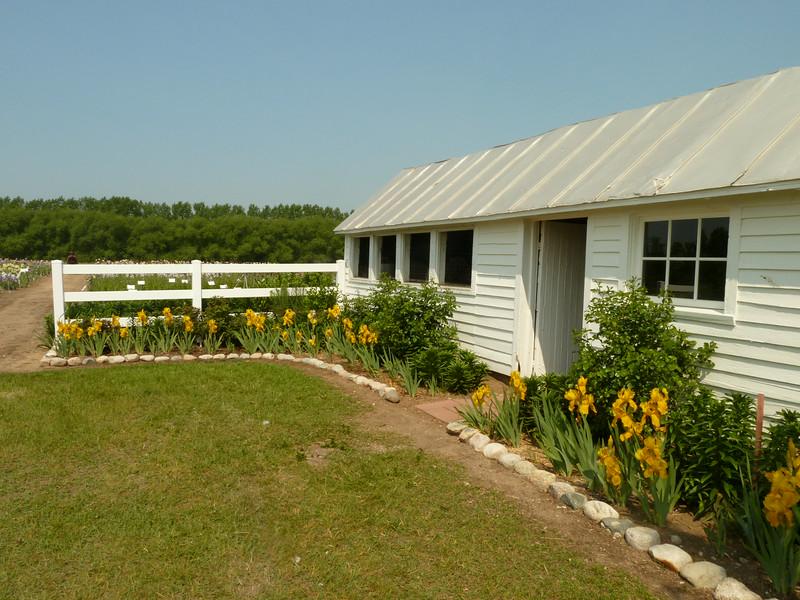 Iris Farm, Traverse City, MI
