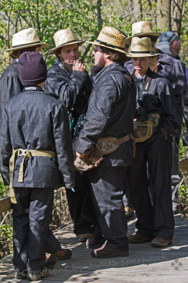 Amish Birders