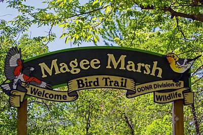 Magee Marsh Boardwalk