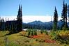 2475 - Paradise Inn - Mount Rainier National Park