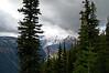 2479 - Sunrise - Mount Rainier National Park