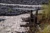 2459 - Nisqually River - Mount Rainier National Park