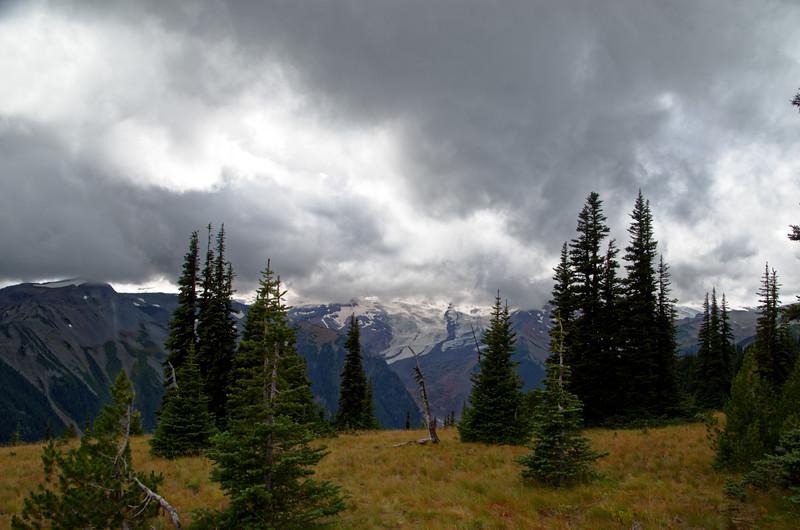 2485 - Sunrise - Mount Rainier National Park