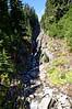 2498 - Mount Rainier National Park
