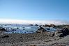 2909 - Battery Point Lighthouse - Along the California Coast Highway_DxO