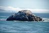 2916 - Battery Point Lighthouse - Along the California Coast Highway_DxO_DxO_1
