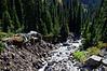 2499 - Mount Rainier National Park
