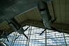 2628 - The Spruce Goose - Evergreen Aviation & Space Museum - McMinnville, Oregon_DxO