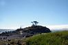 2905 - Battery Point Lighthouse - Along the California Coast Highway_DxO