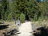 2935 - Devastated Area - Lassen Volcanic National Park - California_DxO