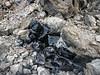 2771 - Big Obsidian Flow - Newberry Volcanic National Monument_DxO
