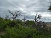 3640 - Scotts Bluff National Monument