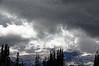 2483 - Sunrise - Mount Rainier National Park