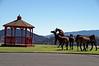 3051 - Wild horses in town - Virginia City, Nevada