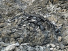 2770 - Big Obsidian Flow - Newberry Volcanic National Monument_DxO