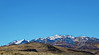 3126 - Northern Nevada