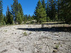 2941 - Devastated Area - Lassen Volcanic National Park - California_DxO