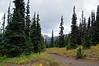 2482 - Sunrise - Mount Rainier National Park