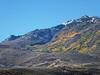 3124 - Northern Nevada