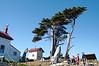 2918 - Battery Point Lighthouse - Along the California Coast Highway_DxO_DxO_1
