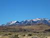 3128 - Northern Nevada