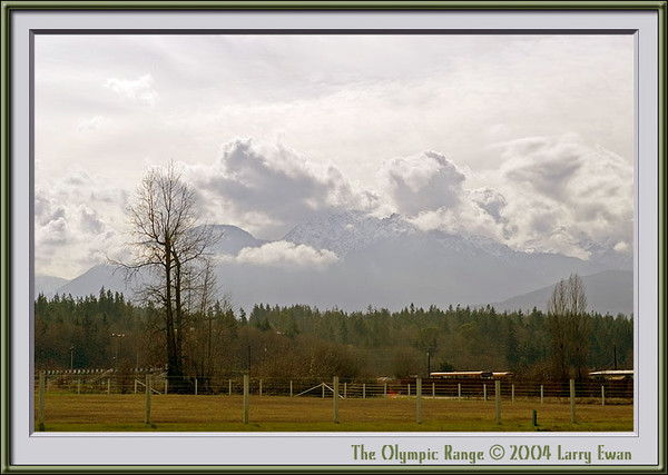 Olympic Range, Washington State