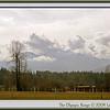 Olympic Range, Washington State
