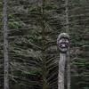 Bergen Troll