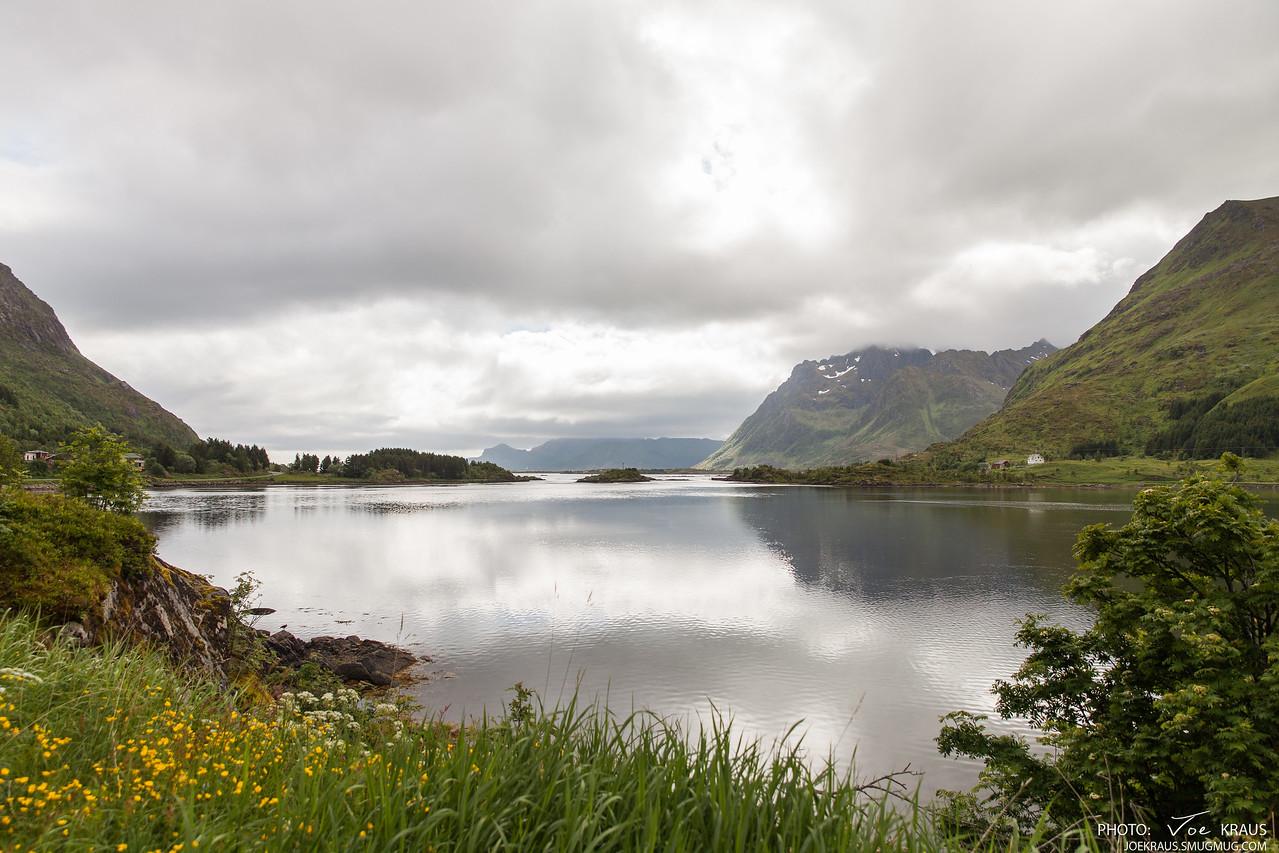Green Fjords