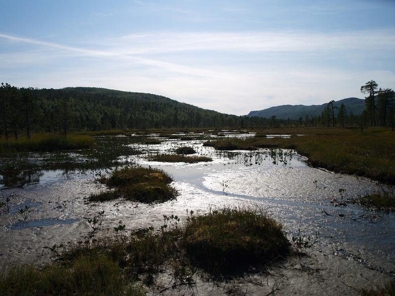 Jotulhaugvatn Natural Reserve en la isla de Senja
