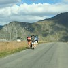On the road again - another typical Lofoten sight