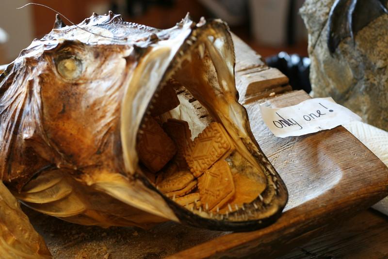 Snack time in the Lofoten Stockfish Museum