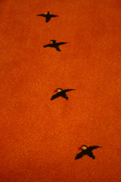 I like the little puffins on the carpet