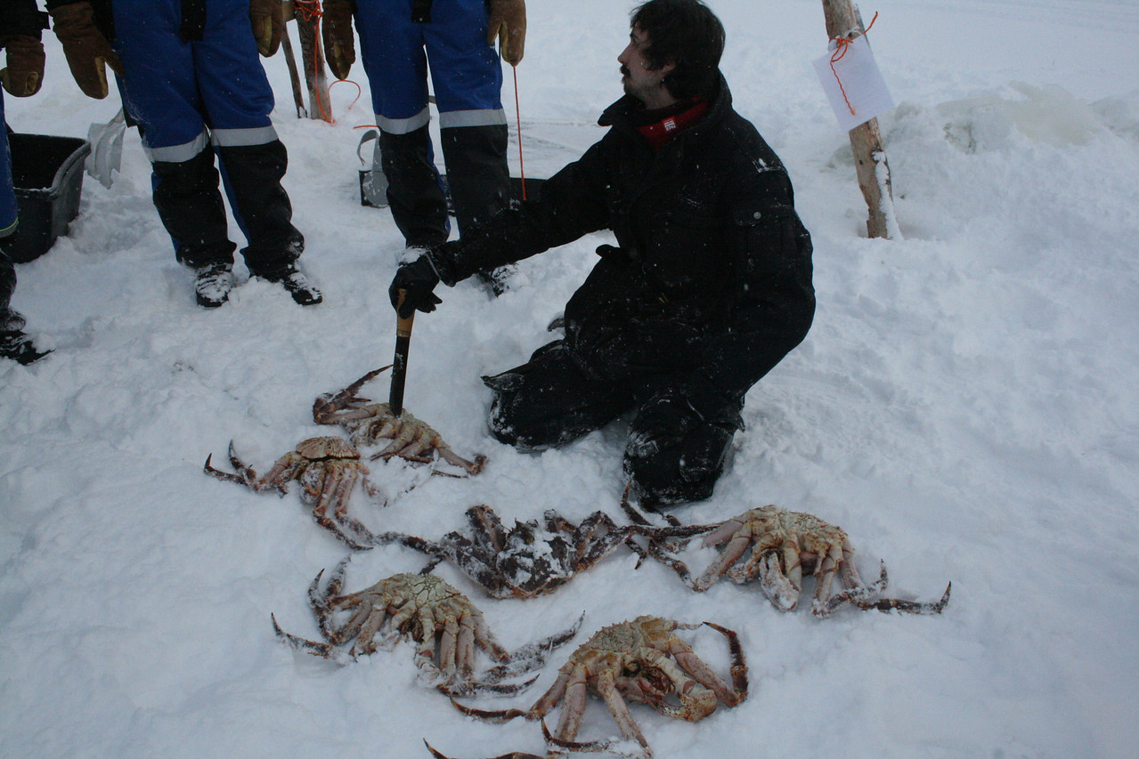 Here Michael is showing us ow to kill the crabs. I end up killing one also