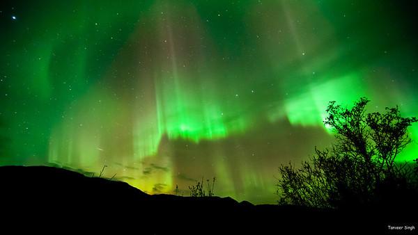 Aurora Borealis Select