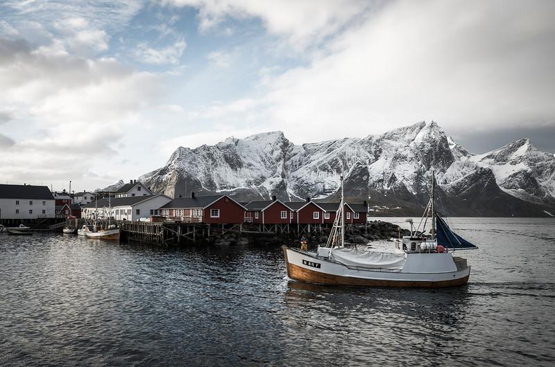 fresh catch   hamnøy, norway