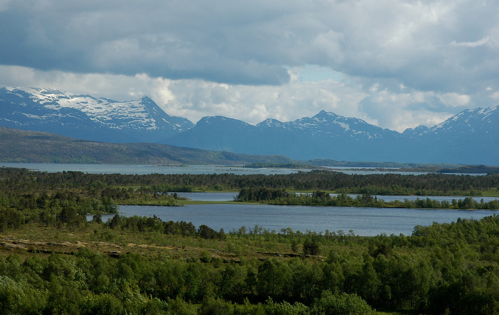 Sagfjorden