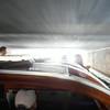 Tour boat under a bridge