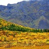 NOR- Near Hov, Lofoten IMG_2582sm