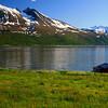 Norway - near Tromso _MG_8581