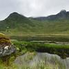 Ein Moorsee